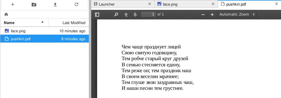 """JupyterLab открыт файл PDF со стихом Пушкина: """"Чем чаще празднует лицей Своя святую годовщину"""""""