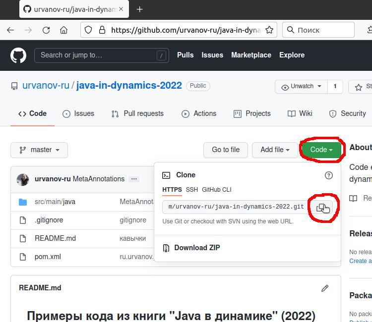 Copy GitHub project URL